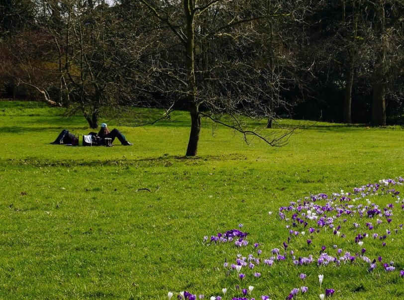 Kew Gardens Spring (5)