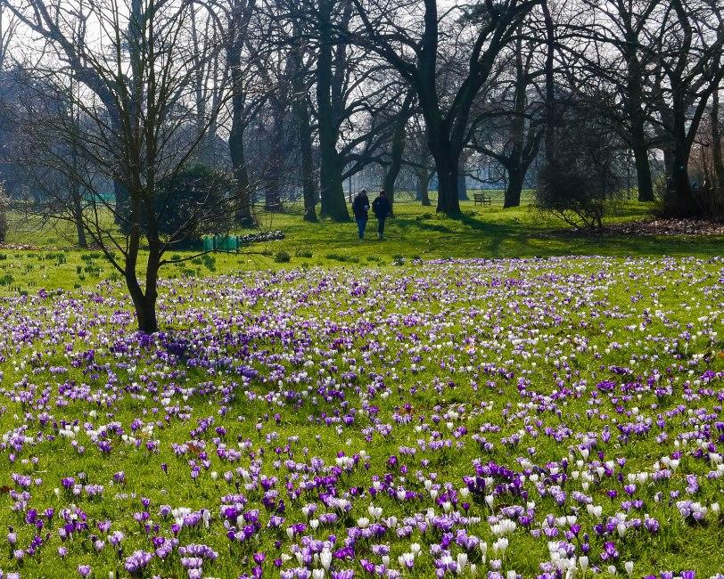 Kew Gardens Spring (8)