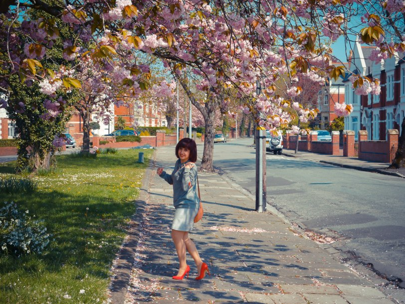 Cherry blossoms red shoes (2)