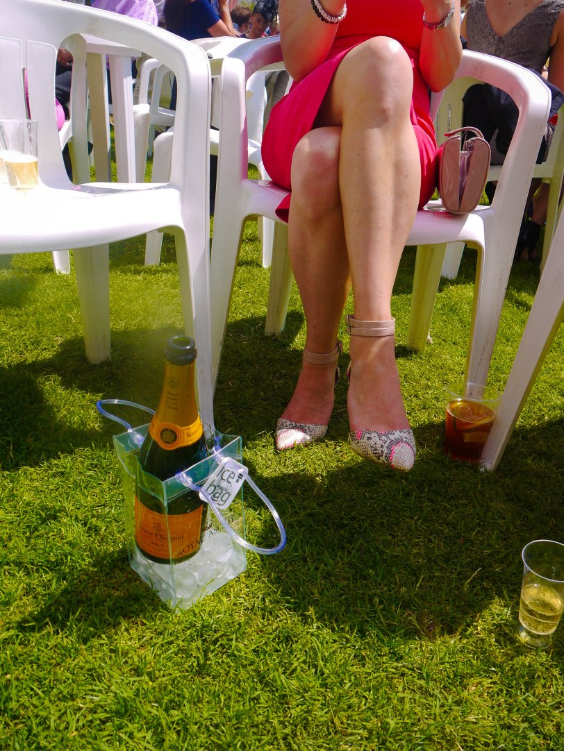 ShadeofRedBlog_Royal_Ascot_2014 (11)