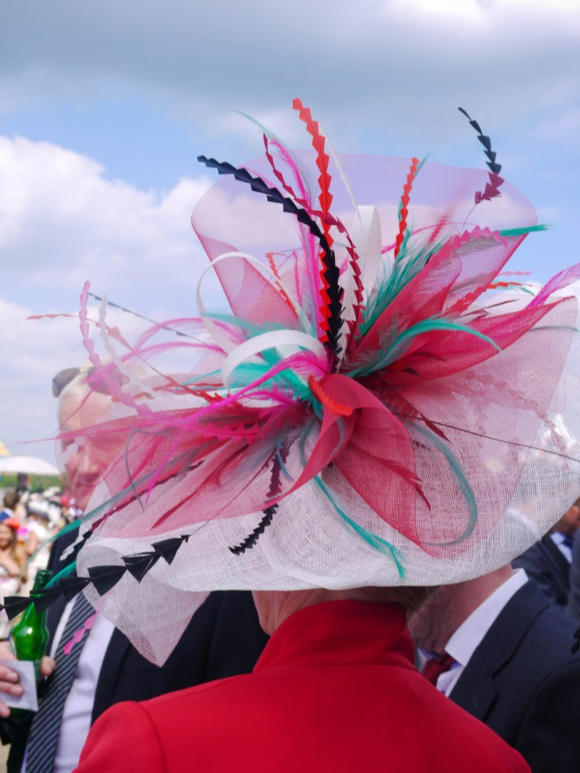 ShadeofRedBlog_Royal_Ascot_2014 (23)