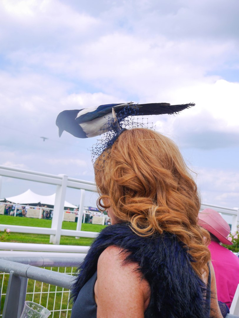 ShadeofRedBlog_Royal_Ascot_2014 (32)