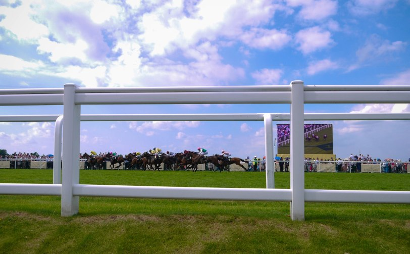 ShadeofRedBlog_Royal_Ascot_2014 (35)