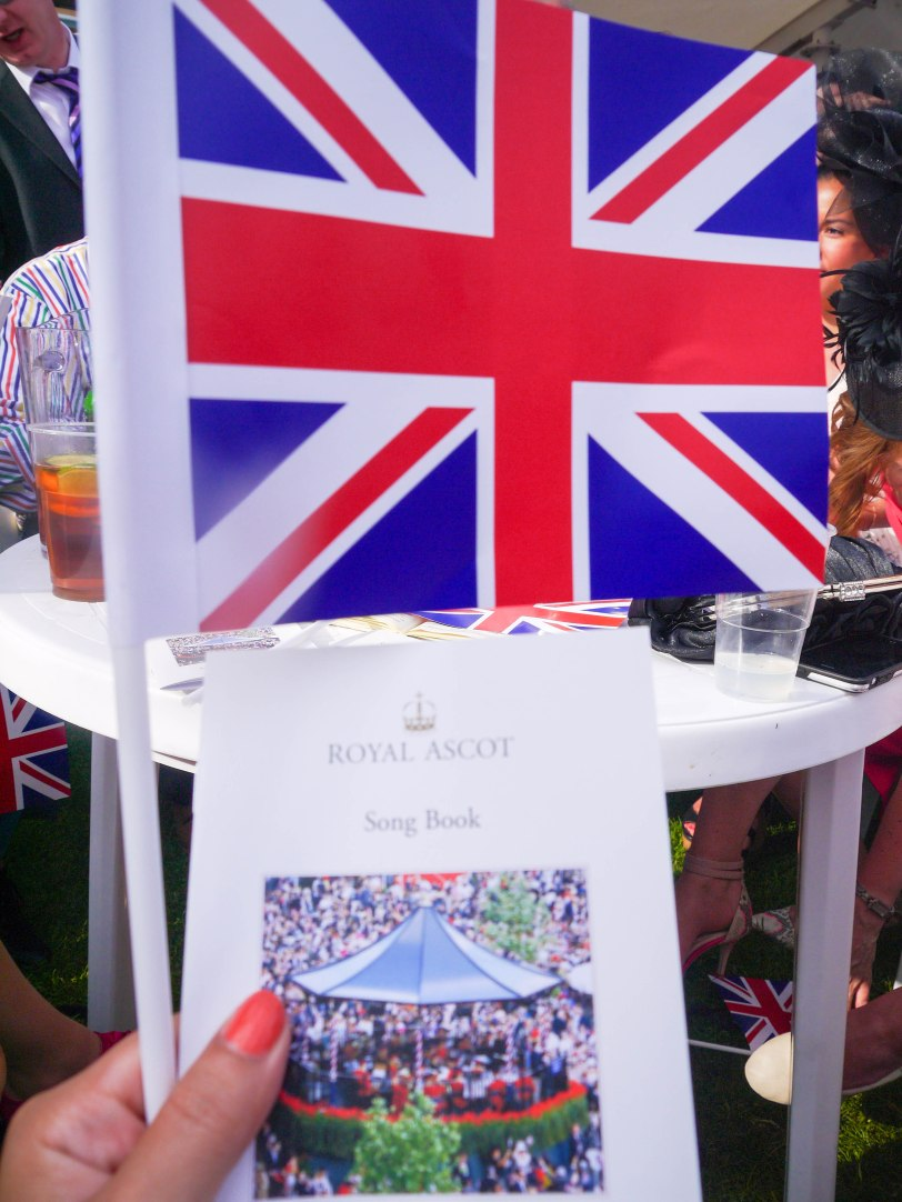 ShadeofRedBlog_Royal_Ascot_2014 (40)