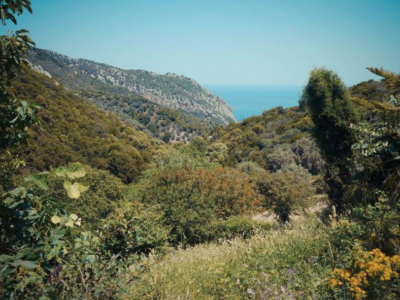 ShadeofRedBlog_Skiathos_Monastery (23)
