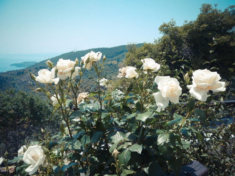 ShadeofRedBlog_Skiathos_Monastery (26)