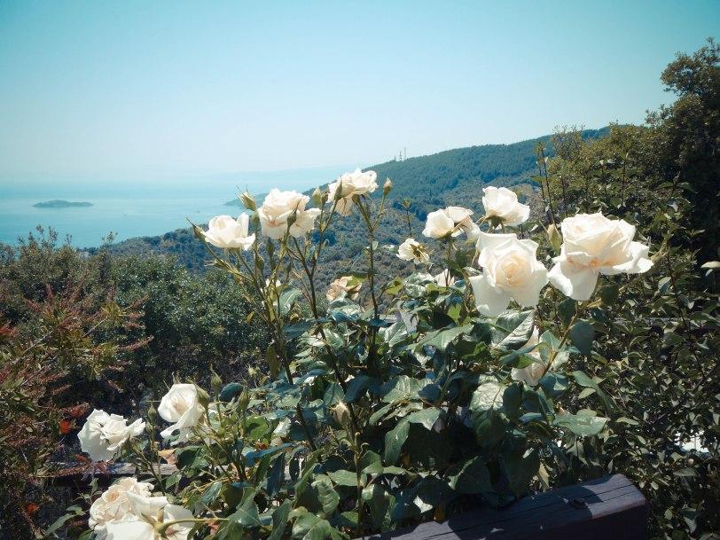 ShadeofRedBlog_Skiathos_Monastery (29)