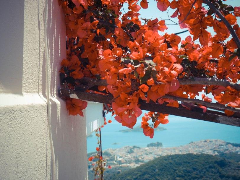 ShadeofRedBlog_Skiathos_Monastery (32)