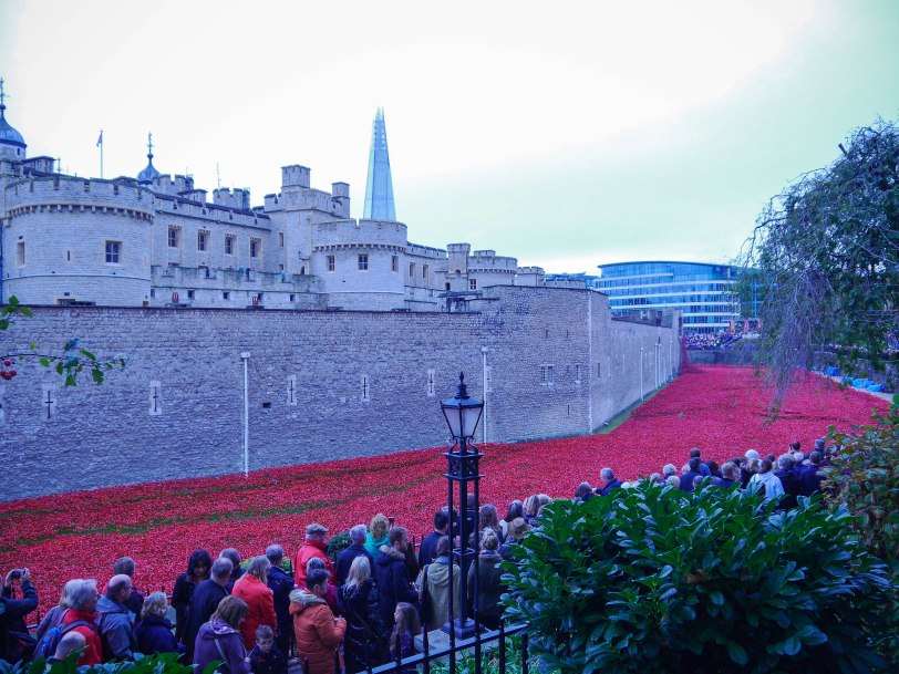Shade of Red Blog_Tower_Poppies (2)