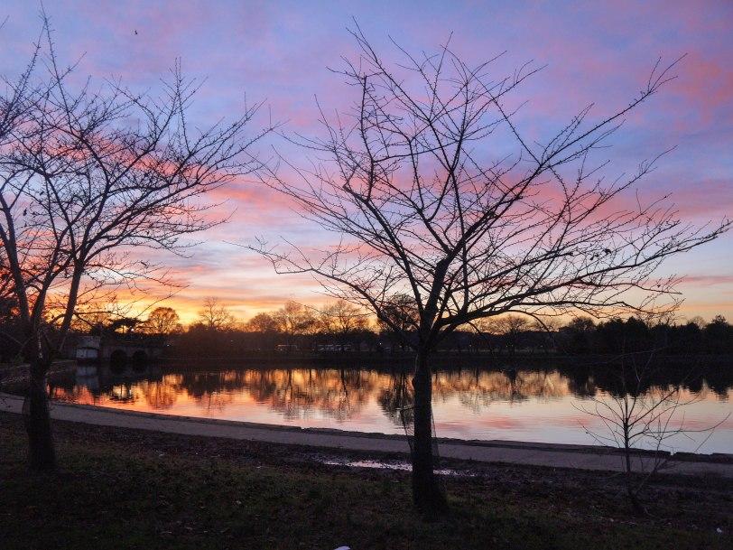 Shade of Red Blog_Washington_sunsets (15)