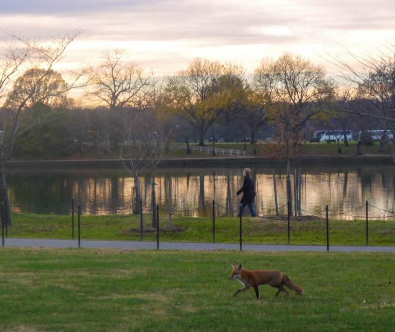 Shade of Red Blog_Washington_sunsets (3)