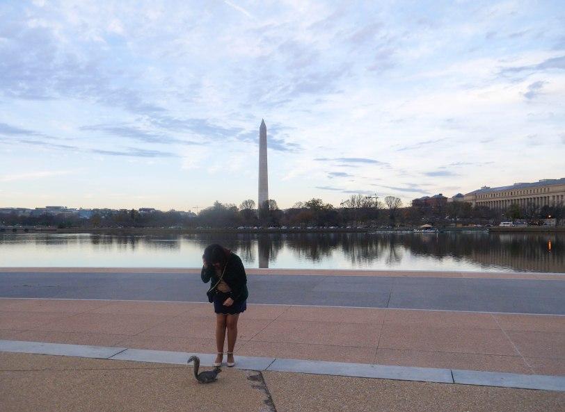 Shade of Red Blog_Washington_sunsets (5)