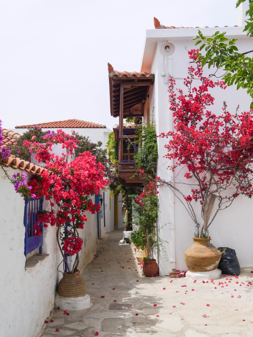 Shade of Red Blog_Skopelos_Greece_holiday (1)