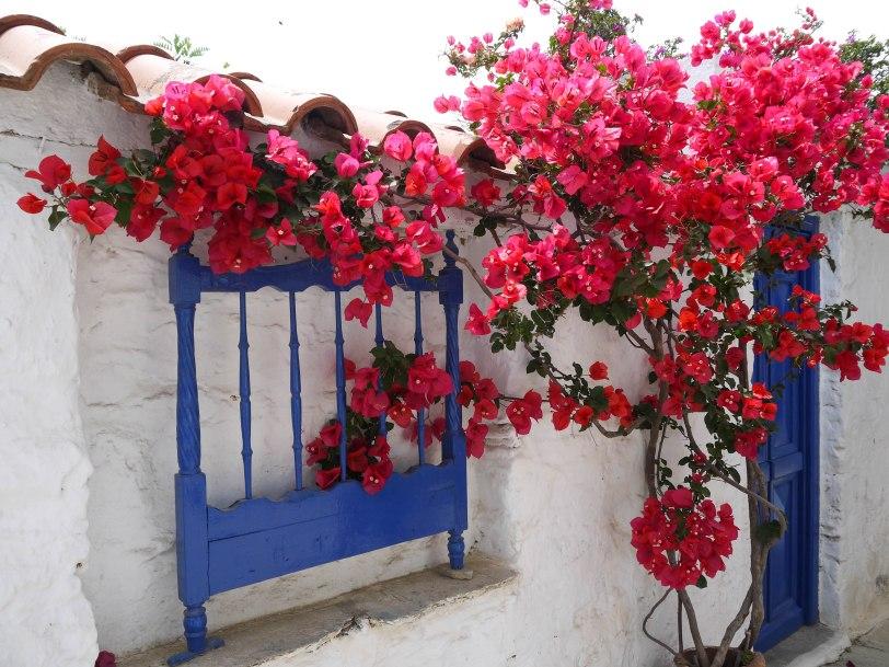 Shade of Red Blog_Skopelos_Greece_holiday (22)
