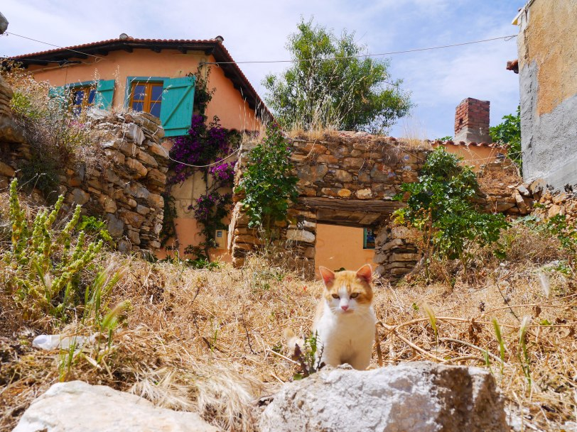 Shade of Red Blog_Skopelos_Greece_holiday (9)