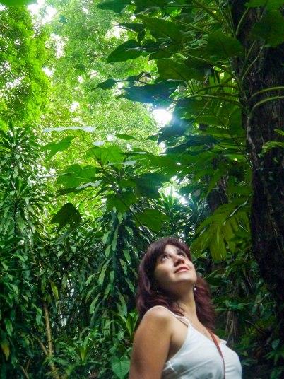 Shade of Red Blog_Botanical Gardens_Singapore (19)