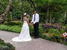 Shade of Red Blog_Botanical Gardens_Singapore (2)