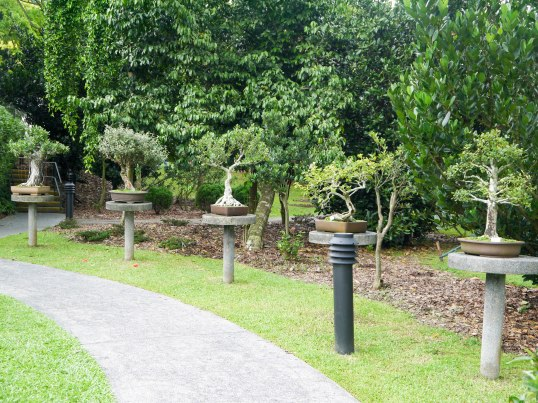 Shade of Red Blog_Botanical Gardens_Singapore (20)