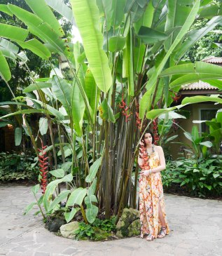 Shade of Red Blog_Botanical Gardens_Singapore (26)