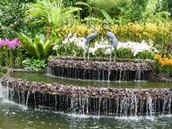 Shade of Red Blog_Botanical Gardens_Singapore (29)