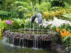 Shade of Red Blog_Botanical Gardens_Singapore (30)