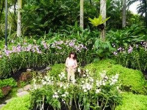 Shade of Red Blog_Botanical Gardens_Singapore (33)