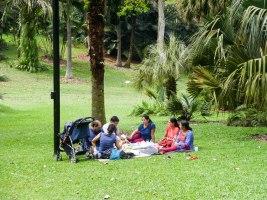 Shade of Red Blog_Botanical Gardens_Singapore (39)