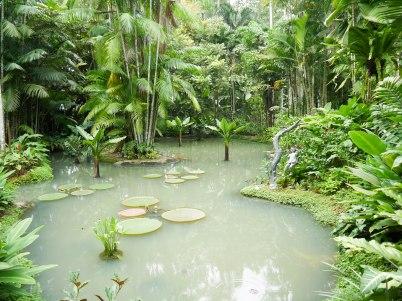 Shade of Red Blog_Botanical Gardens_Singapore (9)
