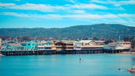 Monterey 081