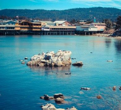 Monterey 084