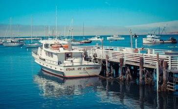 Monterey 113