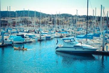 Monterey 120