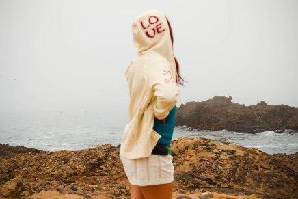 Point Lobos 006