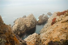 Point Lobos 053