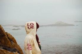 Point Lobos 056