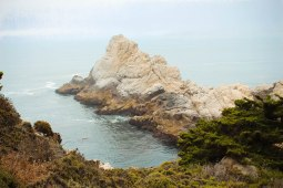 Point Lobos 085