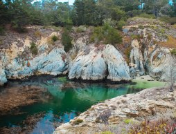 Point Lobos 120