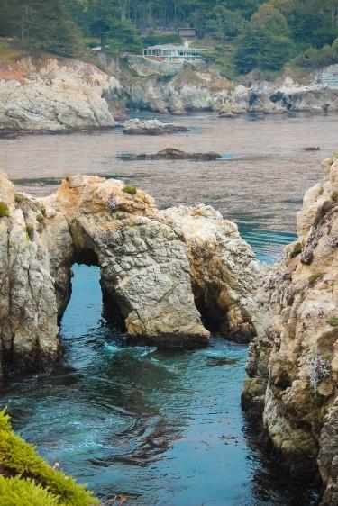 Point Lobos 137